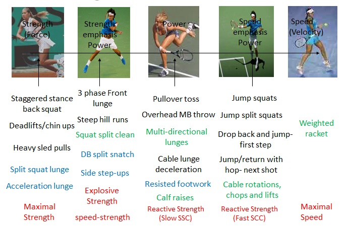 Strength and Power exercises